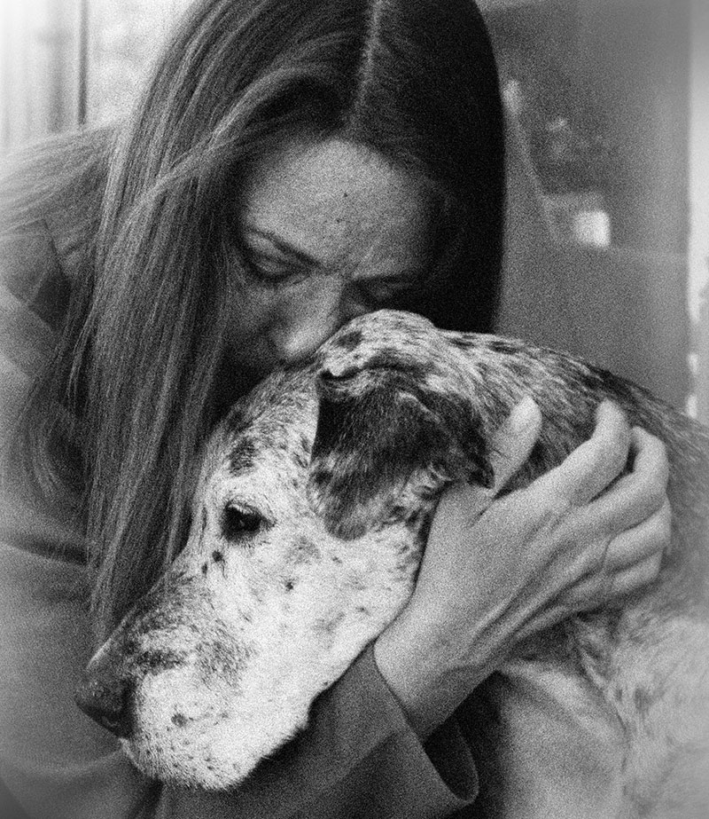 Loving and Losing… and Loving Again:  Coping With the Loss of a Treasured Companion